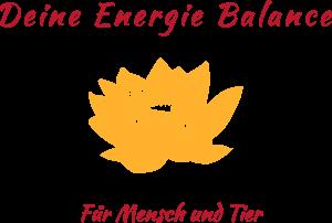 Deine Energie-Balance