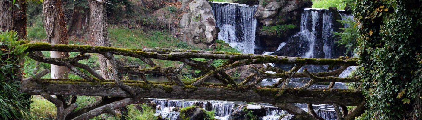Wald mit Fluß über Holzbrücke