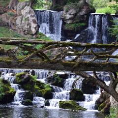 Foto eines Waldbaches mit Holzbrücke